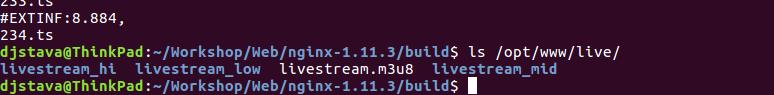 nginx_ffmpeg_variant