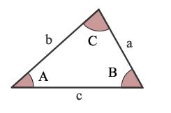 openpose angle